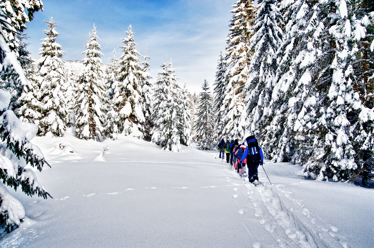 Tips for Snowshoeing This Winter