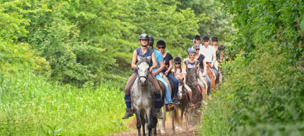Jump into Spring with Horseback Riding