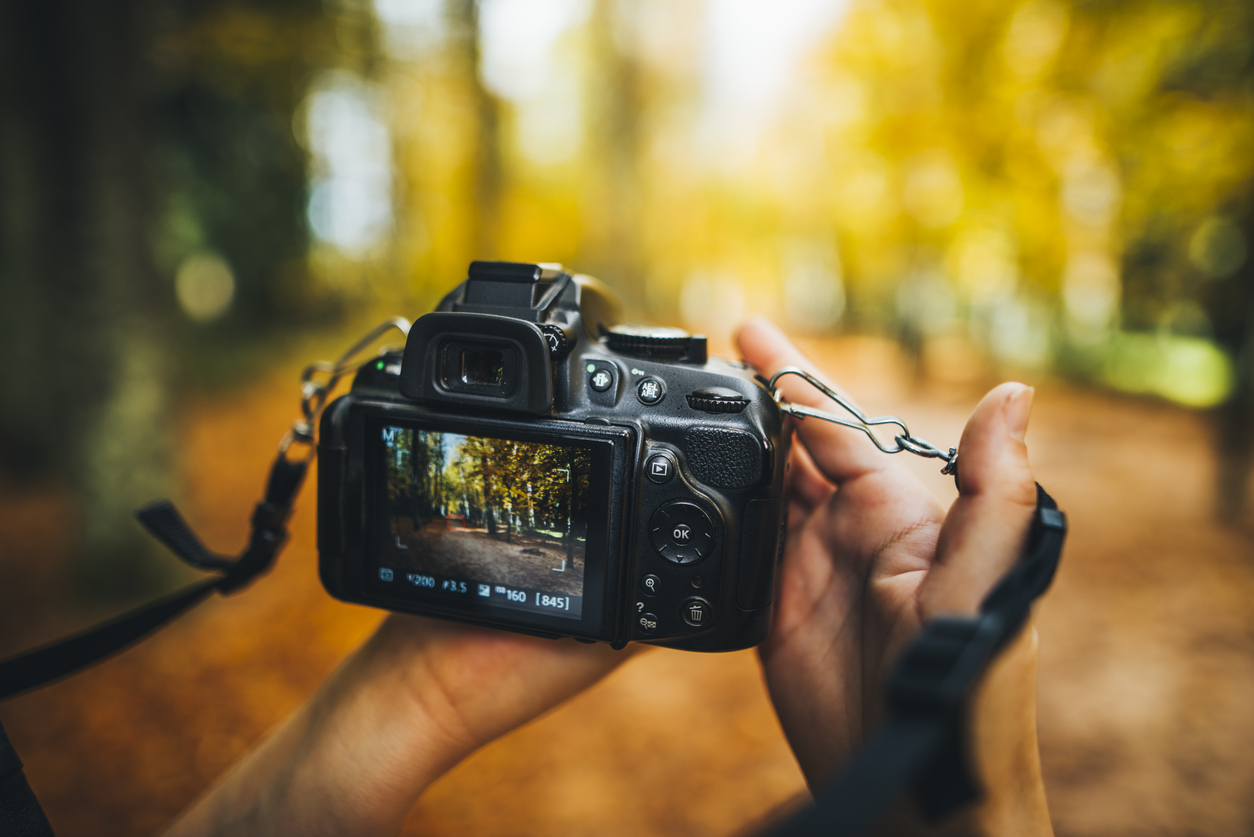 Keys to Taking Great Photos in Fall